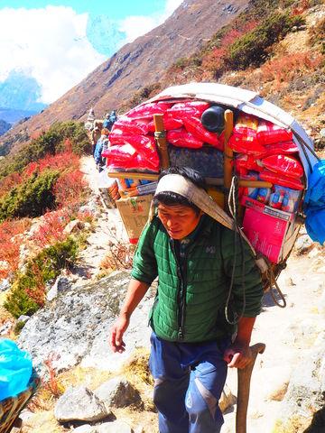 Een Nepalese drager op weg naar een berghut. Credits: Anne van Kessel voor Nemo Kennislink via CC BY-NC-ND 2.0