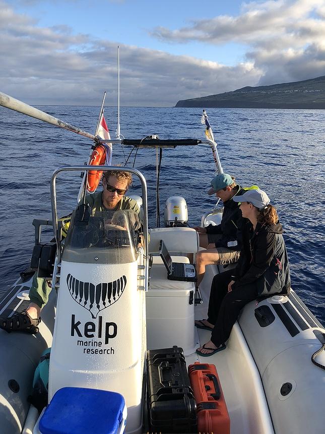Anne van Kessel voor Nemo Kennislink via CC BY-NC-ND 2.0